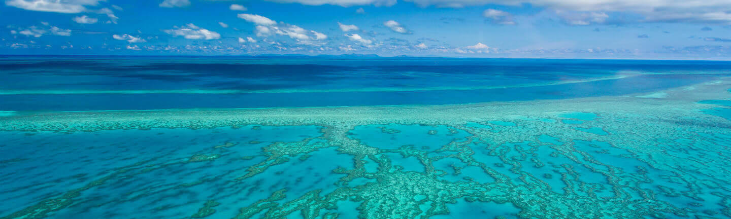 Reasons_to_visit_the_great_barrier_reef