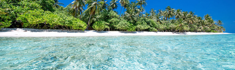 Clear water beach in Sri Lanka