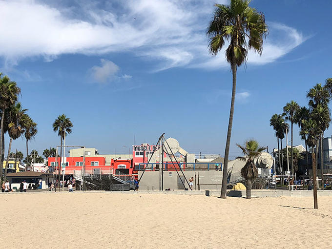 How To Spend 24 Hours In Venice Beach California Flight