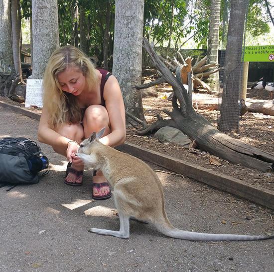 9 Must See Animals In Far North Queensland Flight Centre Uk