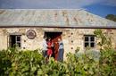 Pearsons Winery Cellar Door, Pearsons Vineyards | © SATC