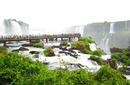 Iguaçu Falls | by Kimberley Scriven of Flight Centre