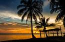 Tropical Gazebo, Rarotonga
