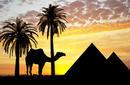 Dusk on the Giza Plateau