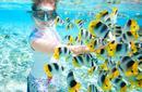 Snorkelling, Tahiti
