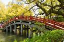 A Traditional Japanese Bridge