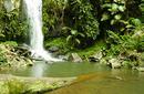 Waterfall, Mount Tamborine, Gold Coast Hinterland
