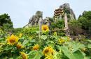 Dai Nam Temples and Safari Park, Binh Duong, north of Ho Chi Minh City