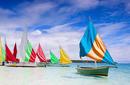 Colourful Sails