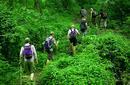 Trekking the Kokoda Trail