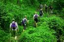 Trekking the Kokoda Trail