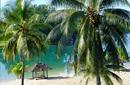 Picturesque Beach, Port Vila   by Flight Centre's Kristin Bonner
