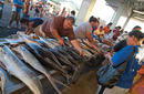 Fish Market | by The Samoa Tourism Authority ©Kirklandphotos.com