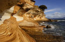 Cliff Formations, Maria Island