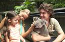 Pat the Koalas