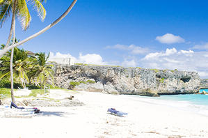 White sandy beach in Barbados with palm trees