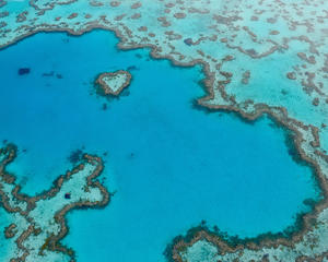 Queensland's East Coast Wildlife & Nature Holiday