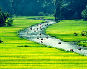 Best of the North (Vietnam) Holiday