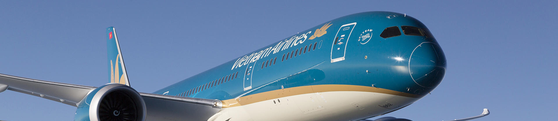 Vietnam Airlines B787