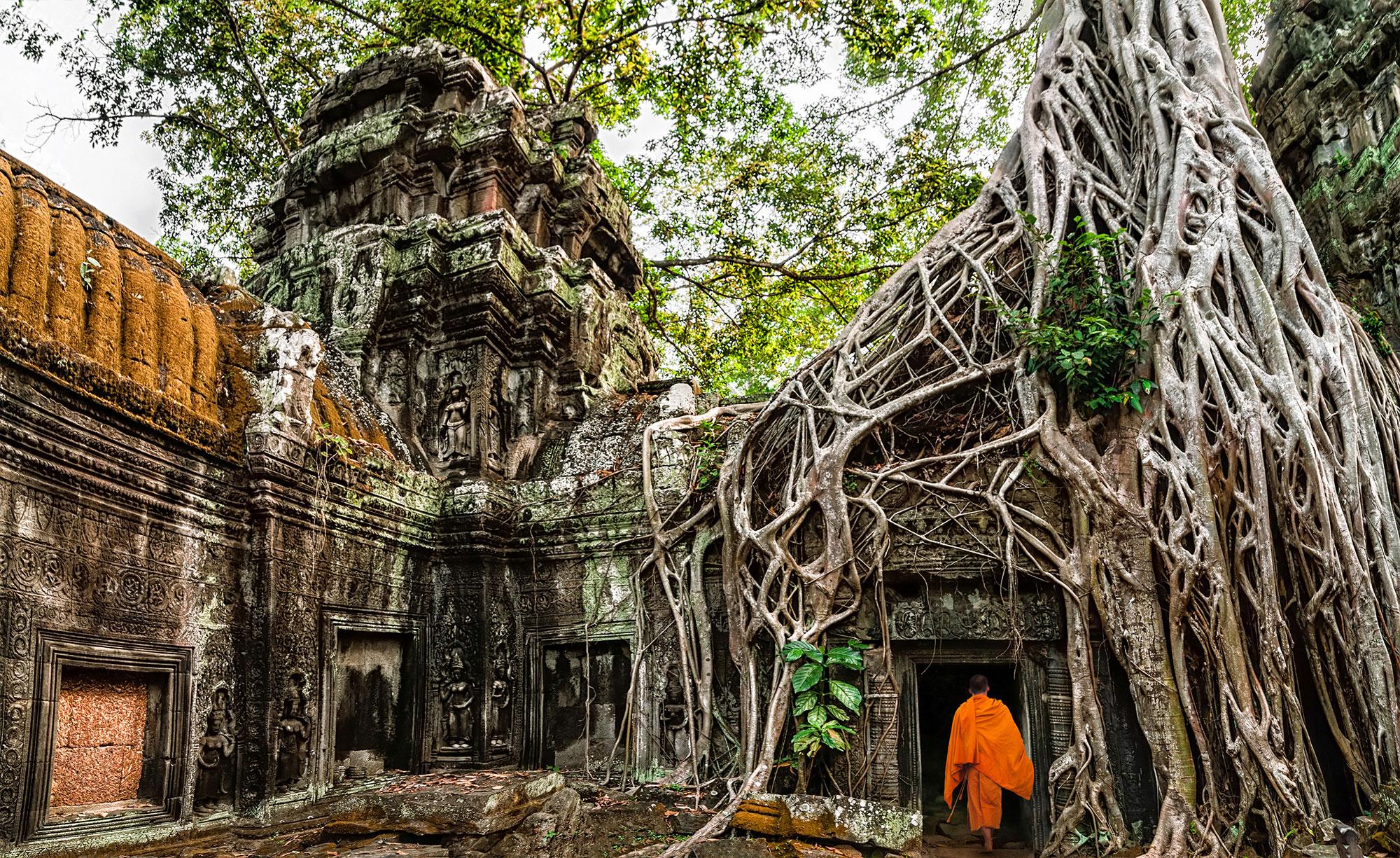 Ta Prohm Temple in Angkor, Cambodia