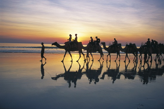 Sunset camel trek on Cable Beach, Broome