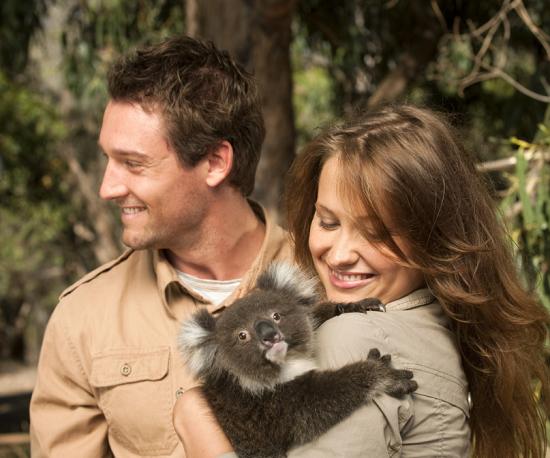 hugging a koala
