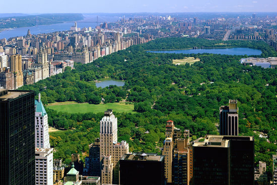 Aerial View of Central Park at Day, New York