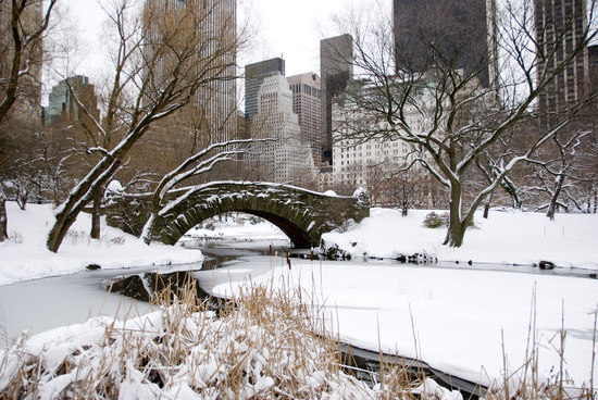 Snow in Central Park at Christmas, New York