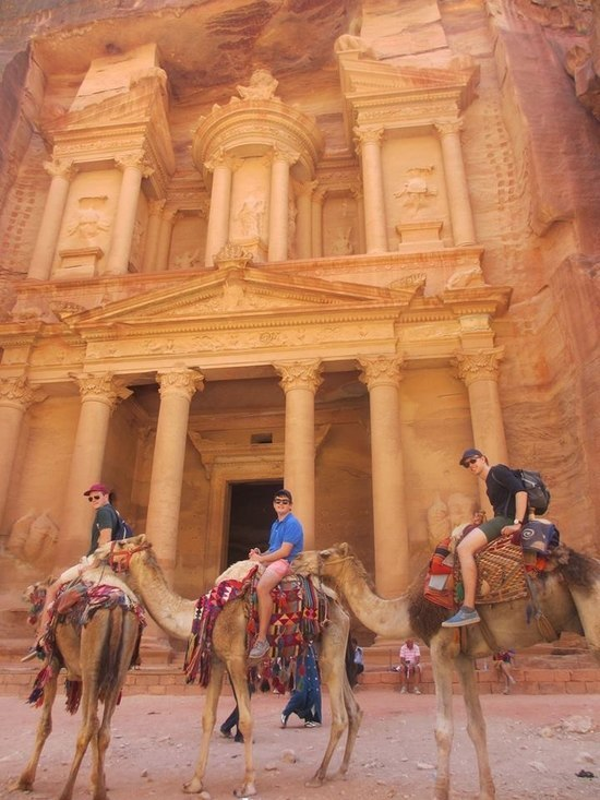 Camels by Petra in Jordan