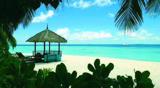 Maldives Beach Through Trees