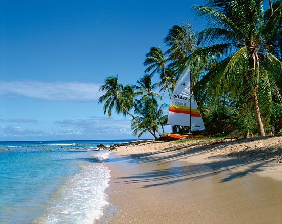 Catamaran on beach, Barbados, West Indies, Caribbean, Central America