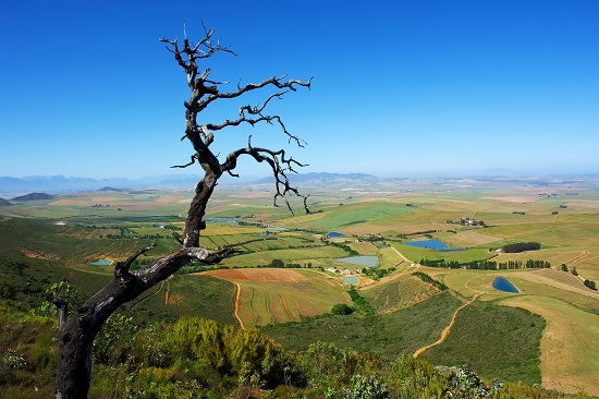 South Africa Wilderness