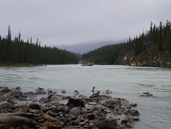 The Athabasca River, the starting point for our Jasper Rafting Adventures trip (Image: Alexandra Gregg)