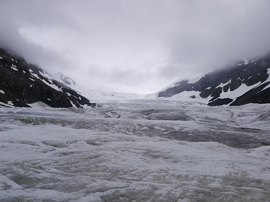 The Athabasca Glacier in the Columbia Icefields (Image: Alexandra Gregg)