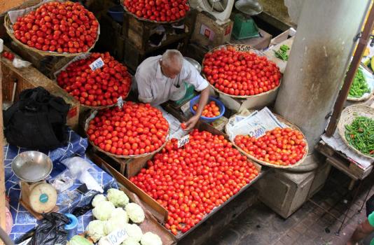 Dawn Jorgensen, RTWE Mauritius, Port Louis Market 4