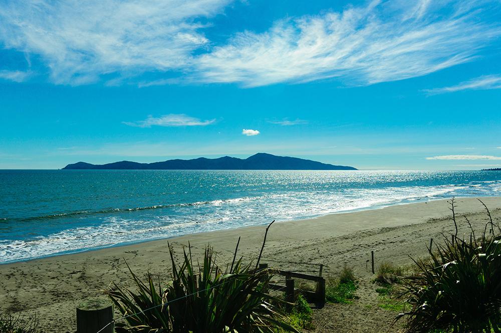 Kapiti Island (Image: Shutterstock)