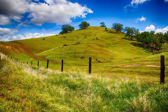 RS Ranch outside Fresno, Cali, USA - shutterstock_216878806