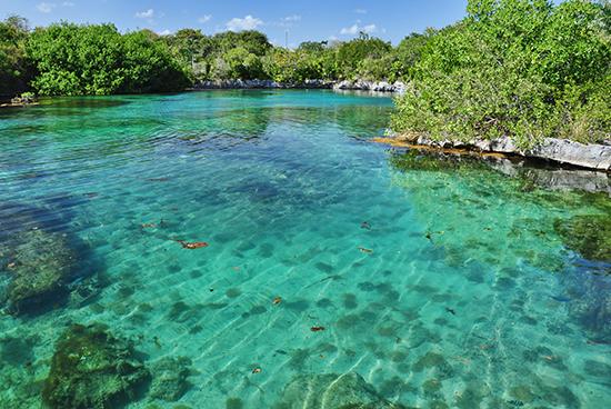 A shimmering lagoon at Xel-Ha Park