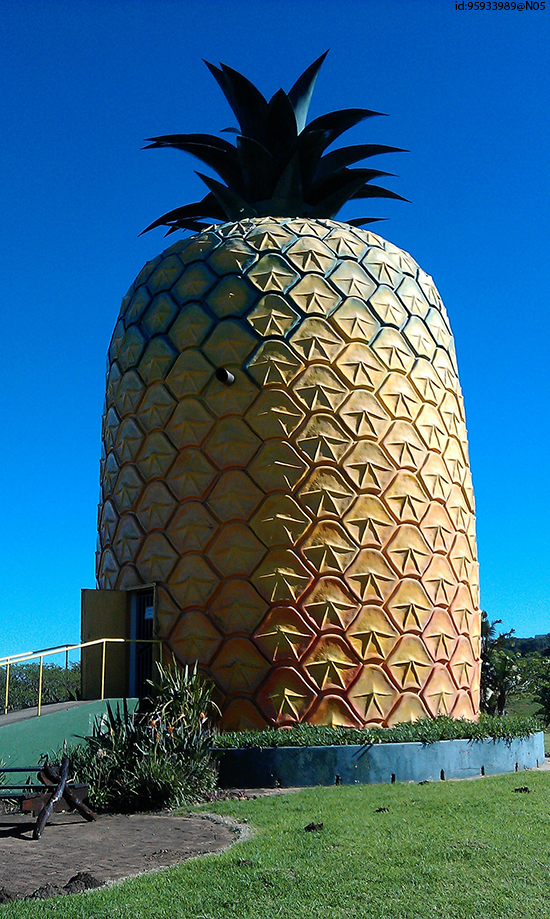 The Big Pineapple in Bathurst, one of South Africa