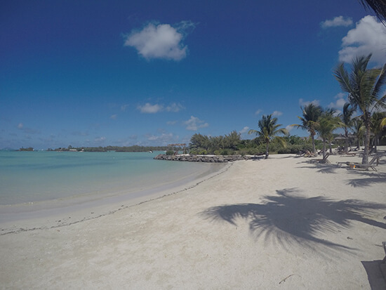 A beach in Mauritius (Image: Tess Watkins)