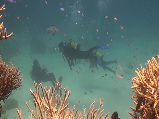 Two of our group – Abbie and Nic – doing an introductory dive (Image: Quicksilver)