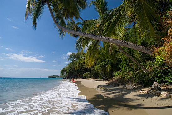 Secluded beach in Samana