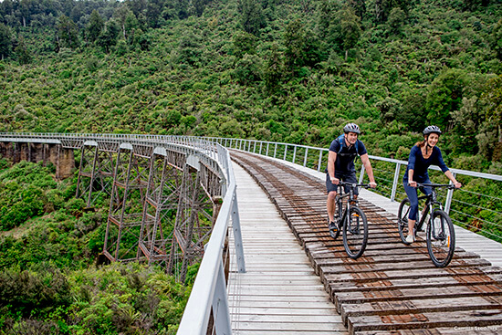 The Timber Trail (Image: Tourism New Zealand)