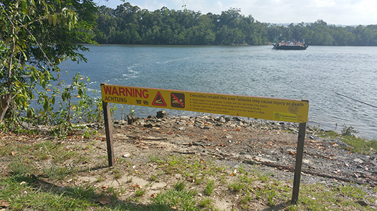 Croc warning sign along the Daintree River (Image: Alexandra Gregg)