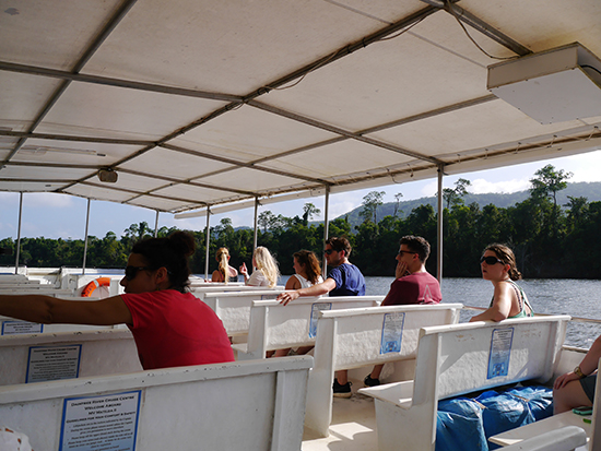 Daintree River Cruise (Image: Alexandra Gregg)