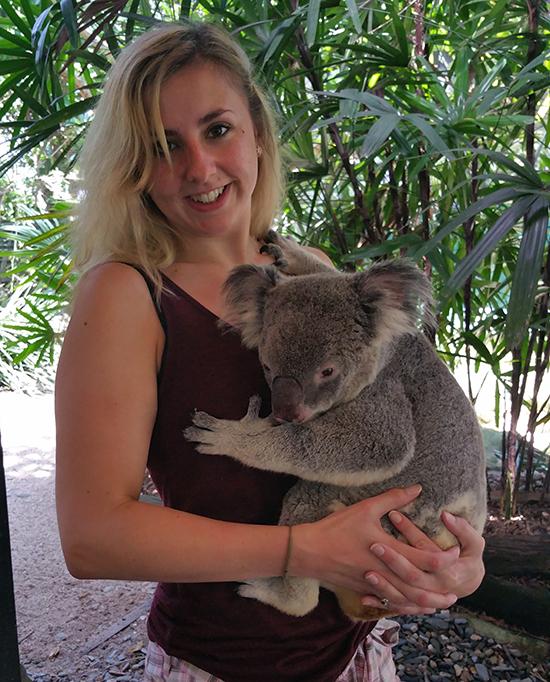 RS Koala