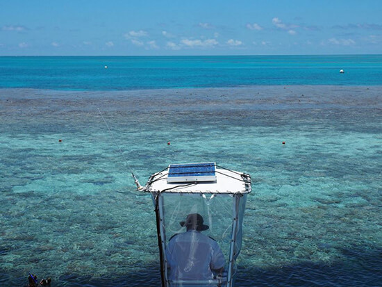 Cruising along the Great Barrier Reef  (Image: Jayne Gorman)