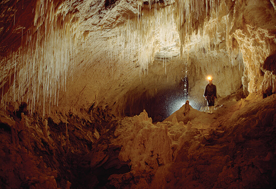 The Waitomo Caves