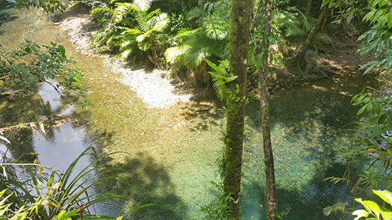 The enticing waters beneath Heritage Lodge & Spa, Daintree (Image: Alexandra Gregg)