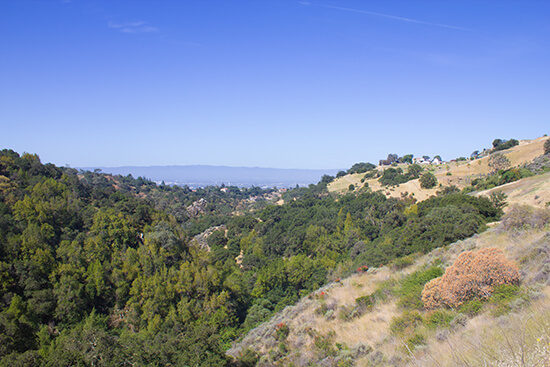 View over Alum Rock Park, San Jose
